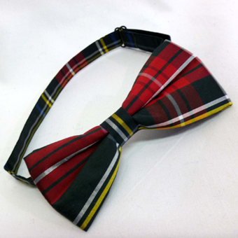 Burns Night, Bow Tie, Dupion Silk Tartan (Ready Tied)